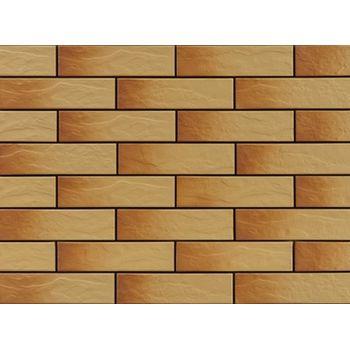 Фасадная плитка Gobi Rustic, фото 1