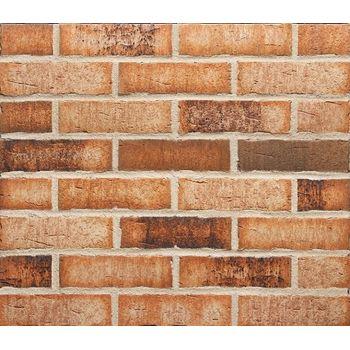 Клинкерная плитка Feldhaus Klinker R665NF14 Sintra Sabioso binaro Красная Ручная формовка, фото 1