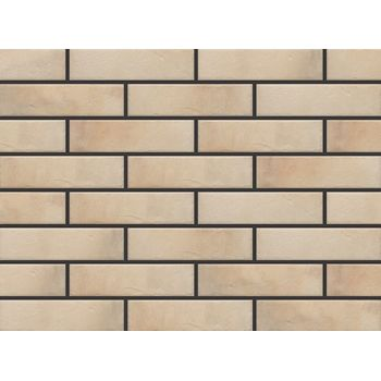 Фасадная плитка Retro Brick Salt, фото 1